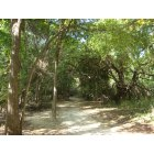 Colleyville: Hiking trail in Colleyville Nature Park