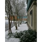 Luling: Snow 2009 at St. Charles Parish Hospital in Luling, La