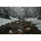 Payson: East Verde River in Winter