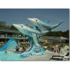 Wisconsin Dells: Home of the Dolphins: Wisconsin Dells