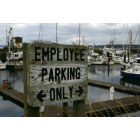 Port Townsend: Sign down near Marina