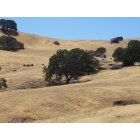 Vacaville: This is a photograph of Vacaville's hills.