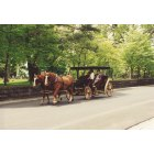 Lexington: Lexington Historical Carriage Ride