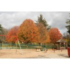 Darien: Cherry Lawn Park in the Fall