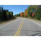 Three Lakes: Why did the turkeys cross the road?