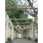 San Antonio: Walkway at the Alamo