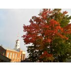 Waterford: Fall foliage on 4th Street (police department builiding tower)