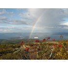 Bar Harbor: Pot O Gold