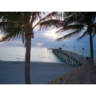 Venice: The beaches of Venice Florida