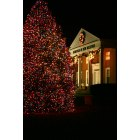 New Milford: Seasons Greetings from New Milford