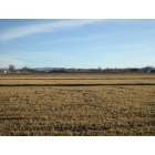 Chino Valley: Farm Field off Rte 89, Chino Valley AZ