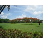 Coral Gables: Granada Golf Course