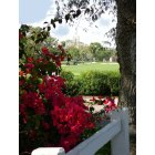 Coral Gables: Riviera Golf Course