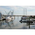 Sneads Ferry: Swan Point Marina