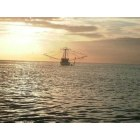 Jacksonville: Shrimper beyond the beach