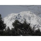 McCloud: Mt. Shasta in all its grandeur