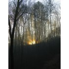 Ellijay: Morning in the mountains