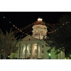 Moultrie: Lights! Lights! Downtown onThanskgiving Night no. 2