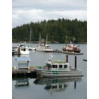 Friday Harbor: Friday Harbor Docks