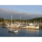 Friday Harbor: Good Morning Friday Harbor WA