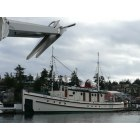 Friday Harbor: Anchored in Friday Harbor