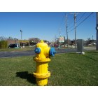 Tinley Park: Fire hydrant in foreground, strip mall and red light camera, looking east on 171st Street from South Harlem Avenue.