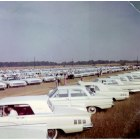 Flora: White Ford Days - 1960