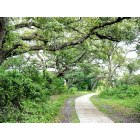 Davie: Nature Walk in Davie