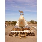Quartzsite: Hi Jolly Memorial, Quartzsite, Arizona