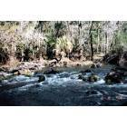 Thonotosassa: Hillsborough River State Park