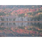 Mount Desert: Reflections of fall in Mt. Desert