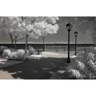 Havre de Grace: The Promenade shot in infrared.