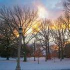 Champaign Park, Dec 4th 2005