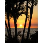 Charlotte Park: Sunset overlooking The Charlotte Harbor
