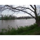 Franklin: River April 25, 2011