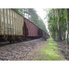 Pooler: Train Cars