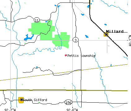Pettis township, MO map