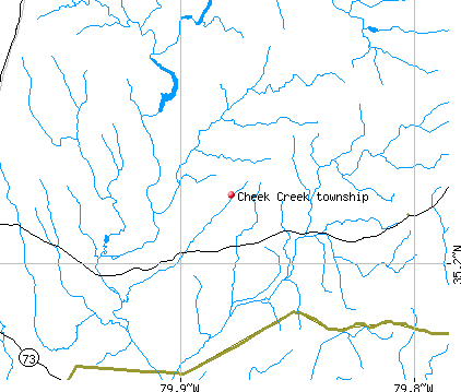 Cheek Creek township, NC map
