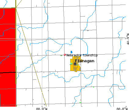 Nebraska township, IL map