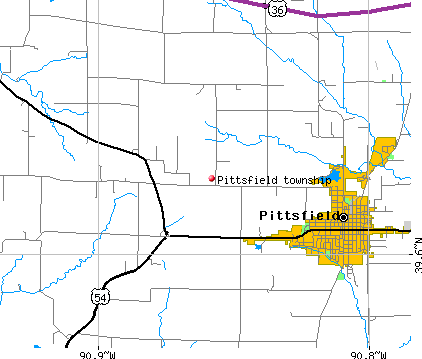 Pittsfield township, IL map