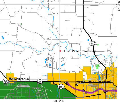 Flint River township, IA map