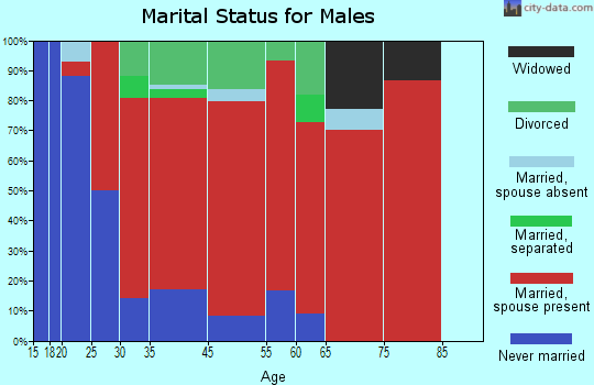 North Hempstead marital status for males