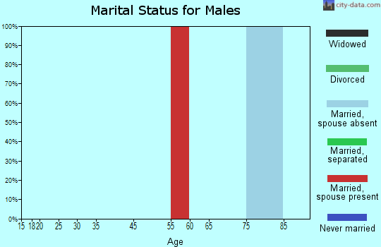 Staten Island marital status for males