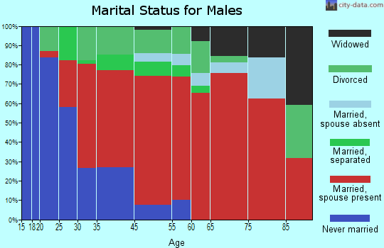 Beech Springs marital status for males