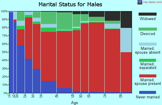 Boca Ciega marital status for males