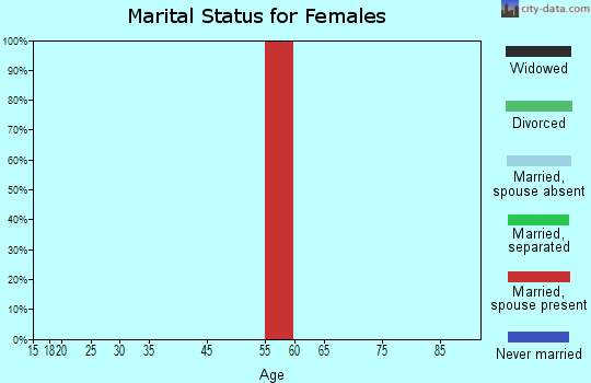 Staten Island marital status for females