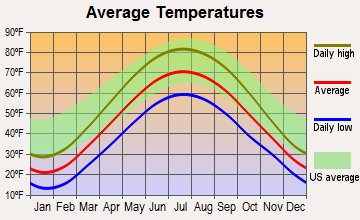 Homer, Michigan average temperatures