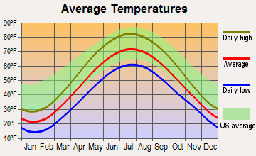 Saginaw Township South, Michigan average temperatures