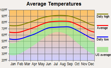 Vineyards, Florida average temperatures