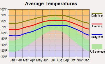 Homestead, Florida average temperatures